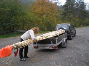 přeprava tyčí na tři pětiapůlmetrové týpí